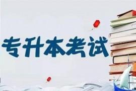 2020浙江专升本分数线预估