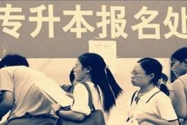 重庆专升本考试免考政策(不需要参加考试)